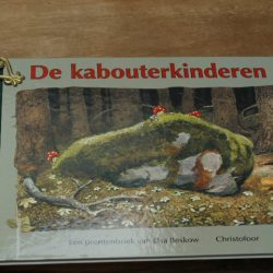 Boek De Kabouterkinderen